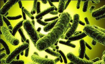 Дисбактериоз кишечника лечение народными средствами