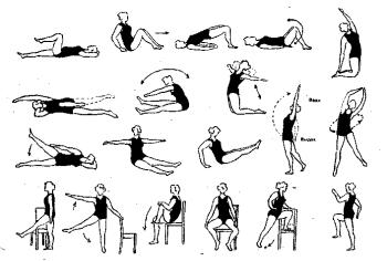 Комплекс физических упражнений для профилактики геморроя