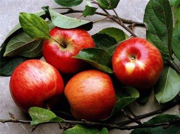 Лечение с помощью яблок