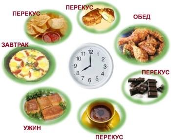 Режим питания здорового человека