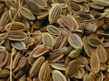 Семена укропа - для лечения холестерина