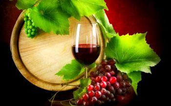 Алоэ и вино