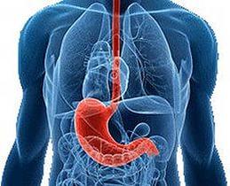Лечение болезней желудка народными средствами