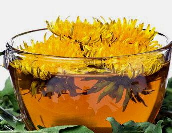 Если рефлюкс-эзофагит застал вас весной, весной, приготовьте сироп из одуванчиков.