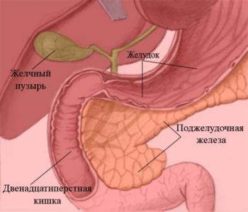 Лечение народными средствами поджелудочной железы