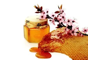 Лечение прополисом и медом