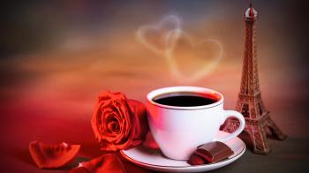 Лепестки розы можно заваривать как чай и принимать внутрь.