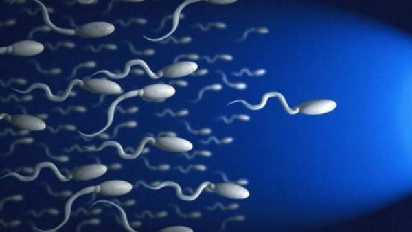 Сперматозоды в холодной воде