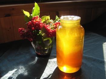 Мед с соком калины