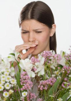 Многие из лекарственных трав сами по себе являются мощными аллергенами