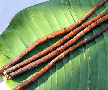 Настойка из корней лопуха
