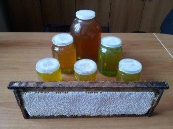 Натуральный мед с пасеки