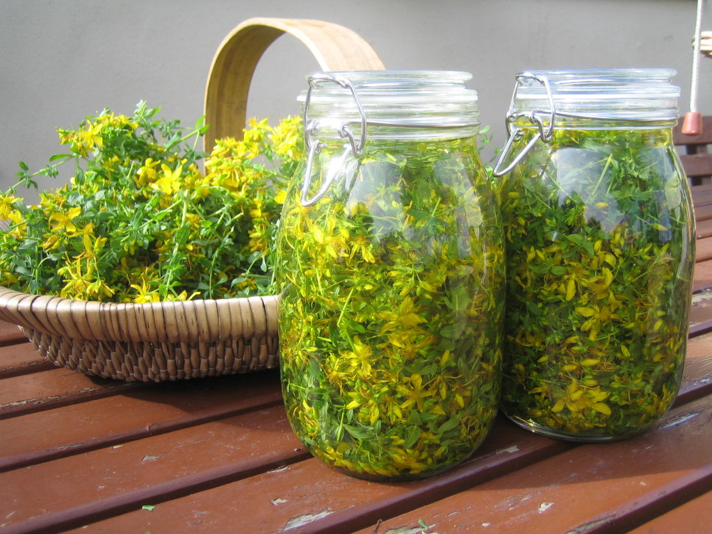 lechenie-psoriaza-sborami-trav