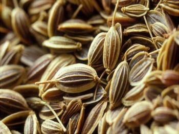 Петрушка (семена)