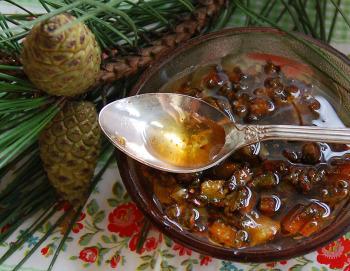 Сосновые почки с медом