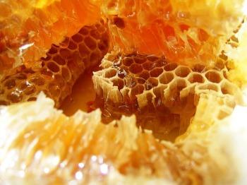 Жвачка из пчелиного воска