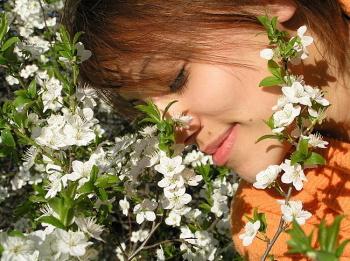 Запах мирта - злейший враг депрессии
