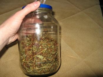 Зверобоя трава