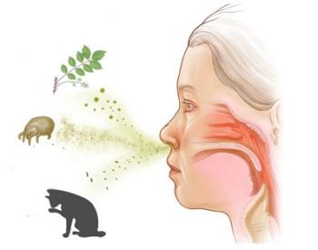 Аллергическая причина отека