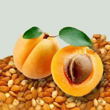 Ядра абрикосовых косточек