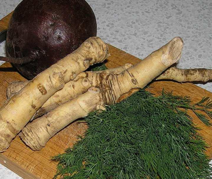 Лечение суставов листьями хрена в домашних условиях 443