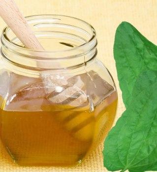 Сок подорожника и мед