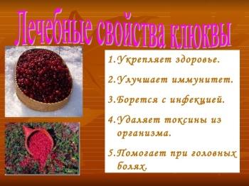Лечебные свойства клюквы