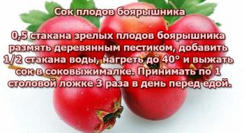 Сок плодов боярышника для лечения атеросклероза