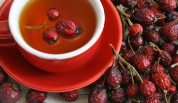 Плоды шиповника содержат много эфирных масел и витаминов