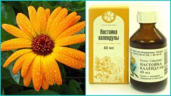 Хронический насморк: лечение народными средствами - лучшие рецепты!