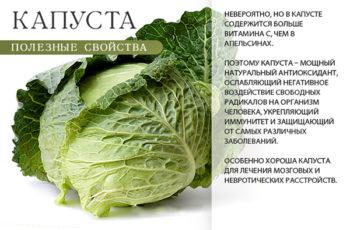 Полезные свойства капусты