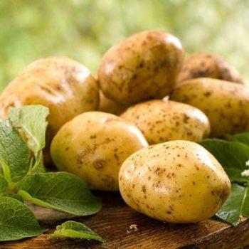 Примочки из сырого картофеля с яйцом обладают максимальным противовоспалительным эффектом