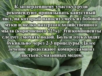 Рецепт с капустой и хозяйственным мылом при мастопатии