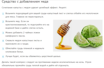 Рецепт с капустой, медом и камфорным маслом